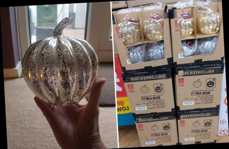 Poundland's must-have light up Halloween pumpkins are back in stock at just £1.50 a pop – The Sun