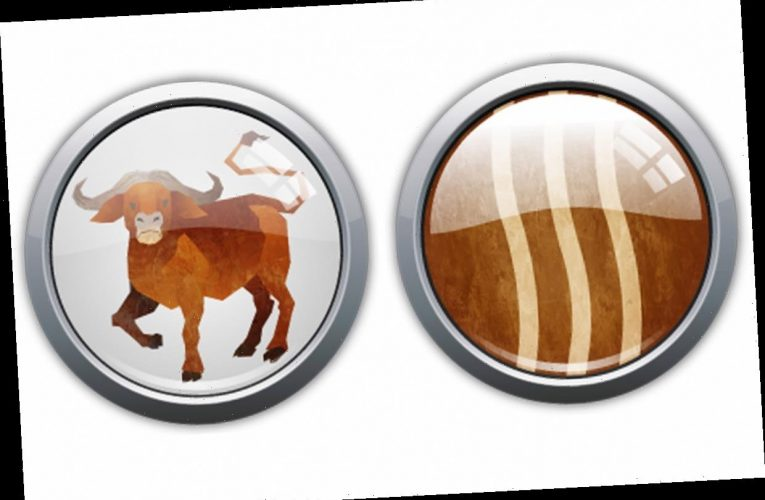 Chinese Horoscope: What is a Wood Ox and what year is it?