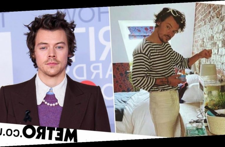 Harry Styles hung out in a fan's bedroom and fed her fish after car broke down
