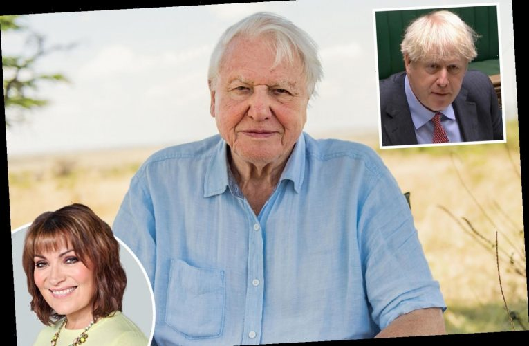 We need a proper leader – not bumbling idiots, step forward Sir David Attenborough