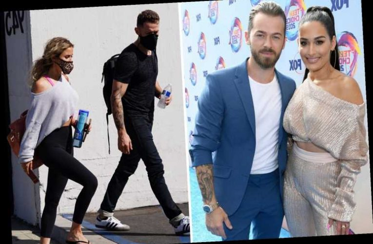 WWE star Nikki Bella reveals fiance's Dancing With the Stars partner leaves her insecure while she's home breast feeding