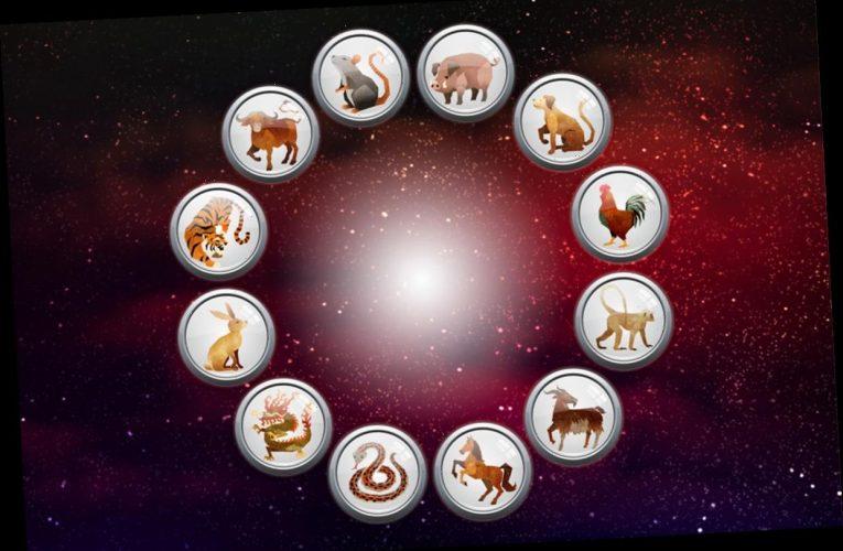 Chinese New Year 2020 – what zodiac animal am I?