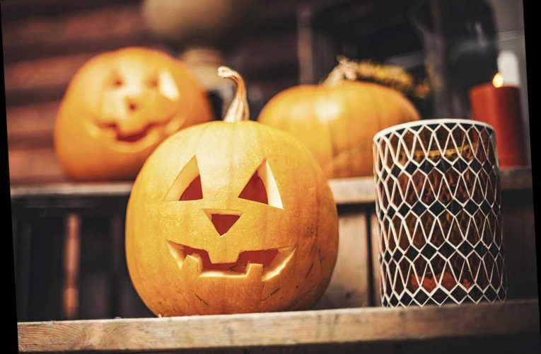 How long do Halloween pumpkins keep before and after carving and what's a white pumpkin? – The Sun
