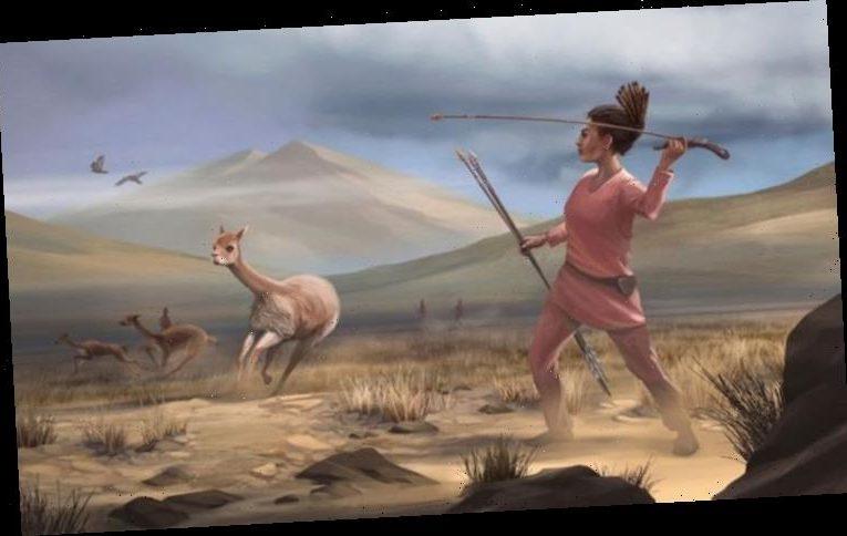 Archaeology breakthrough: 'It's now clear' women flipped gender roles, hunted big game too
