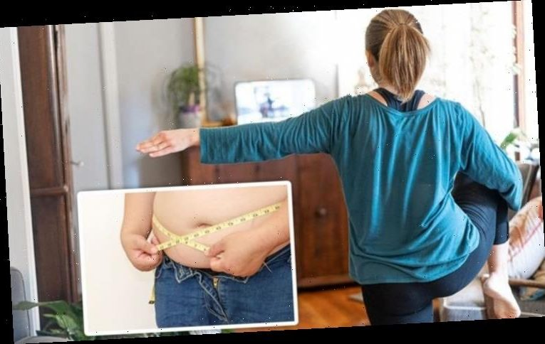How to get rid of visceral fat: Aerobic exercises you can do indoors