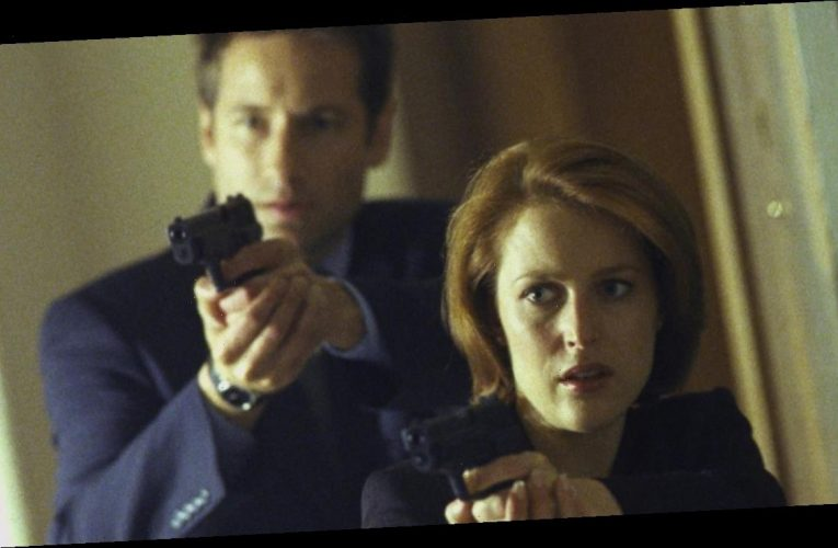Why Gillian Anderson Decided to 'Disappear from Hollywood' After X-Files Success