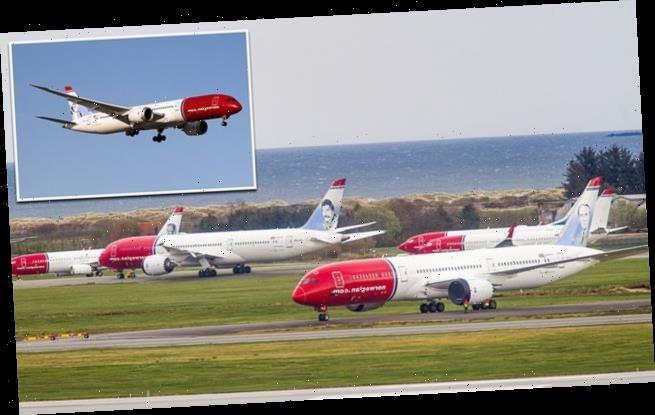 Norwegian Air plunged into winter fight for survival will fly 6 planes