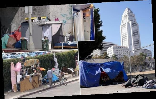 Homeless are building their own 'McMansions' on LA sidewalks