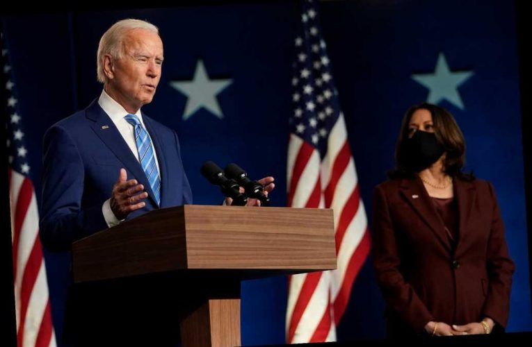 Biden may steal an election for the elitists, but Democrats will regret it: Devine