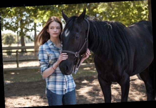 'Black Beauty' Review: Kate Winslet Voices Beloved Horse in Family-Friendly Take on Classic Tale