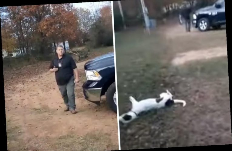 Bungling cop shoots family's pet dog DEAD 'for barking at him' after going to wrong address to look for sex offender