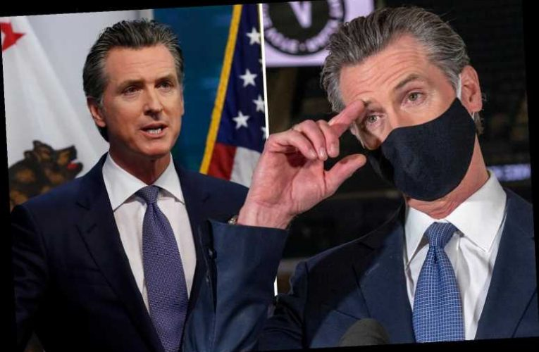 Gov Gavin Newsom 'should have modeled better behavior' when he attended aide's party that broke HIS OWN Covid rules