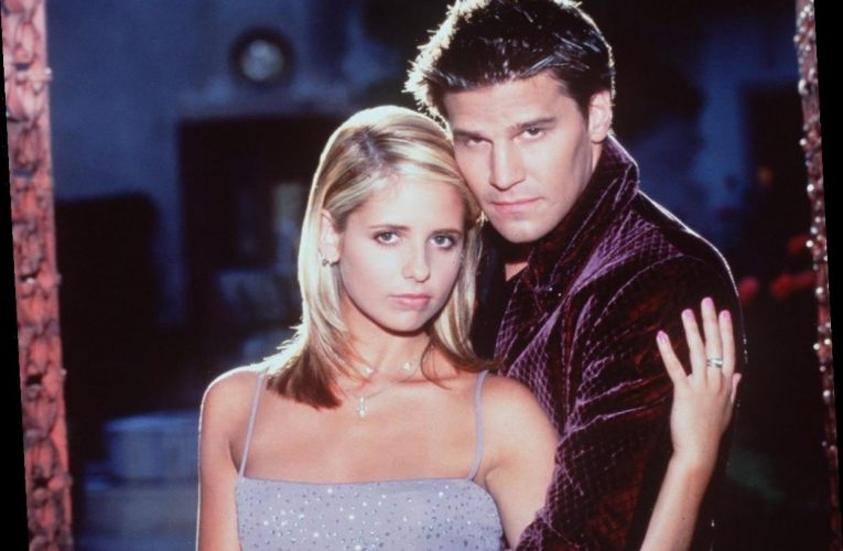 'Buffy the Vampire' Actor Weighs in on Stacey Abrams' Views on the Angel vs. Spike Debate