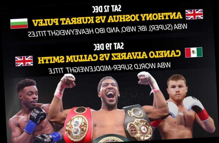 Boxing schedule: Upcoming fight dates and undercards including Joshua vs Pulev, Tyson vs Jones Jr and Canelo vs Smith