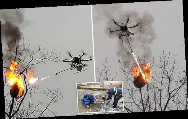 Drone is converted into a flamethrower to destroy 100 wasp nests