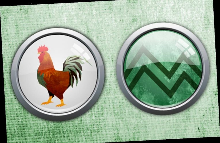 Chinese Horoscope: What is an Earth Rooster and what year is it?