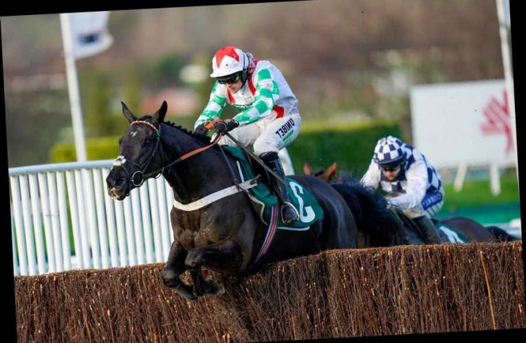 Mister Fisher impresses in Peterborough Chase at Cheltenham while quirky Storm Control continues progress