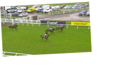 Watch dramatic finish at Taunton as 9-2 shot Oski veers across the track with to throw away win with race at his mercy