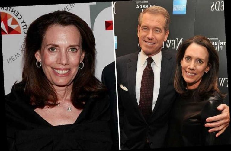 Who is Jane Stoddard Williams, wife of MSNBC anchor Brian Williams?