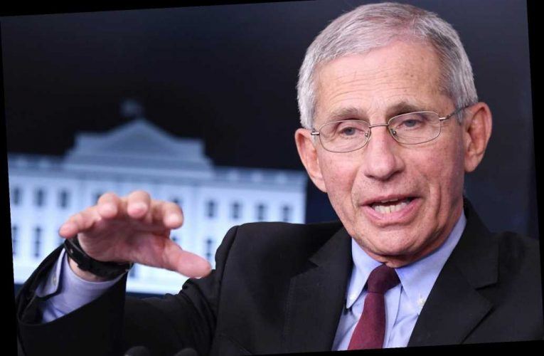 Fauci warns Americans that the worst of COVID-19 is 'still yet to come'