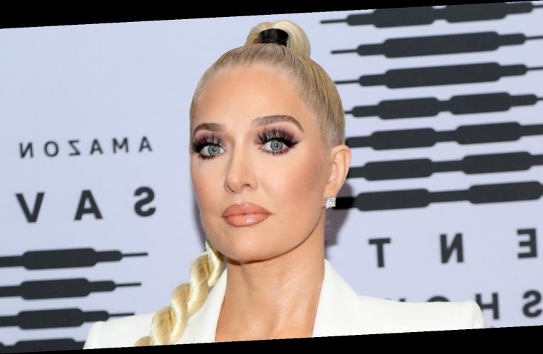 Here's What We Know About The Lawsuit Against RHOBH's Erika Girardi