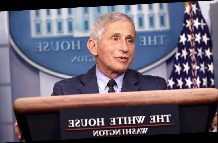 The Relatable Thing Dr. Fauci Plans To Do When The Pandemic Is Over