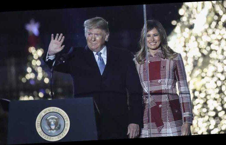 This Trump And Melania Christmas Portrait Is Causing A Stir