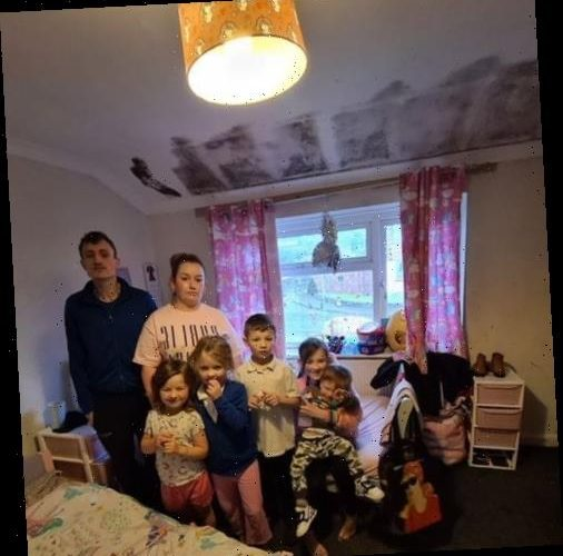 Mum-of-five scared for her kids' health in 'disgusting' mould-ridden council house