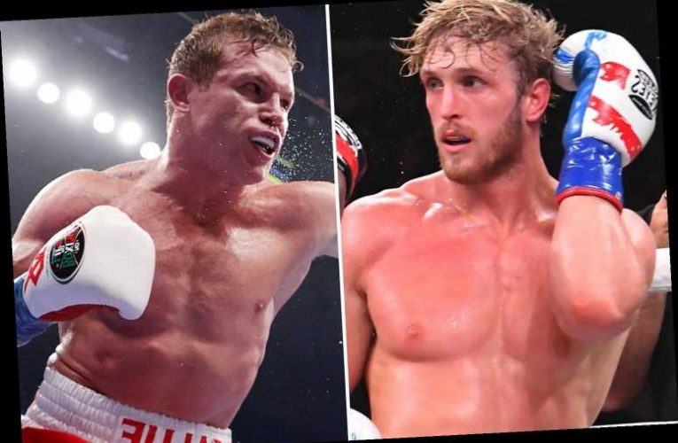 Logan Paul rages 'f*** you' to Canelo Alvarez after P4P King claimed brothers were shaming boxing in furious response
