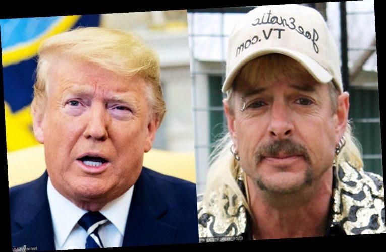 Joe Exotic Launches Lawsuit Against Department of Justice to Score Donald Trump Pardon