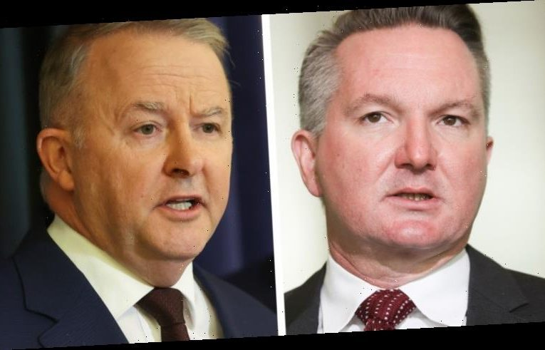 'Either way we win': Labor's plan to get the upper hand in climate wars