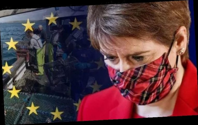 'Gave you £200 million!' SNP under fire after fishermen denounce Brexit export struggle