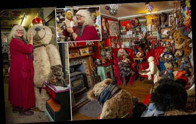 Woman has more than 12,500 cuddly bears at her 'Teddy Rescue'