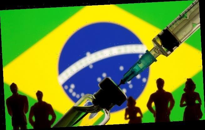 Fears Brazilian strain can reinfect Covid survivors