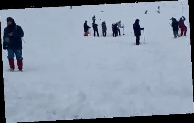 Terrifying moment avalanche crashes down on tourists