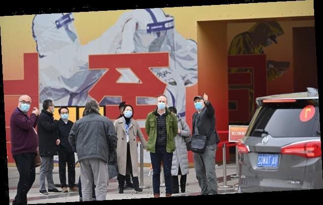 IAN BIRRELL: Virus 'definitely' began in China, say US scientists
