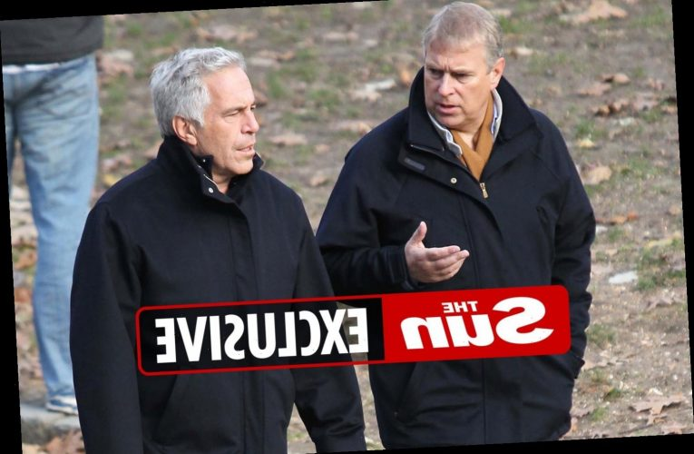 Whistleblower who linked Prince Andrew to Jeffrey Epstein's Paris home to be quizzed again by cops