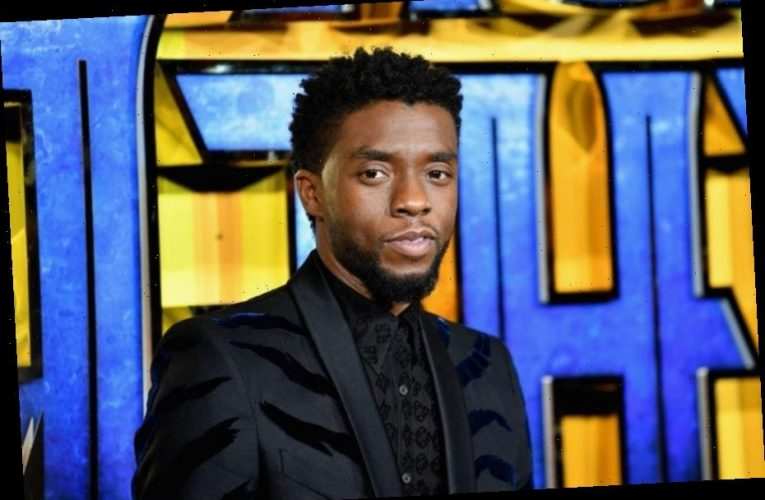 Marvel Studio President Confirms 'Black Panther 2' Will Not Feature CGI Footage Of Chadwick Boseman
