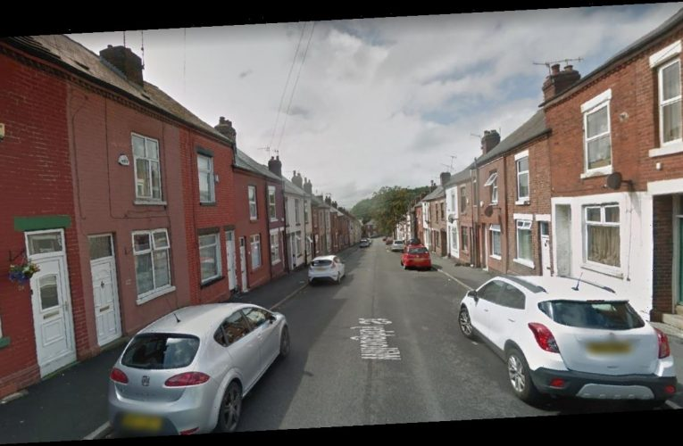 Toddler, 3, injured and girl, 12, unconscious after mass New Year's Eve street brawl