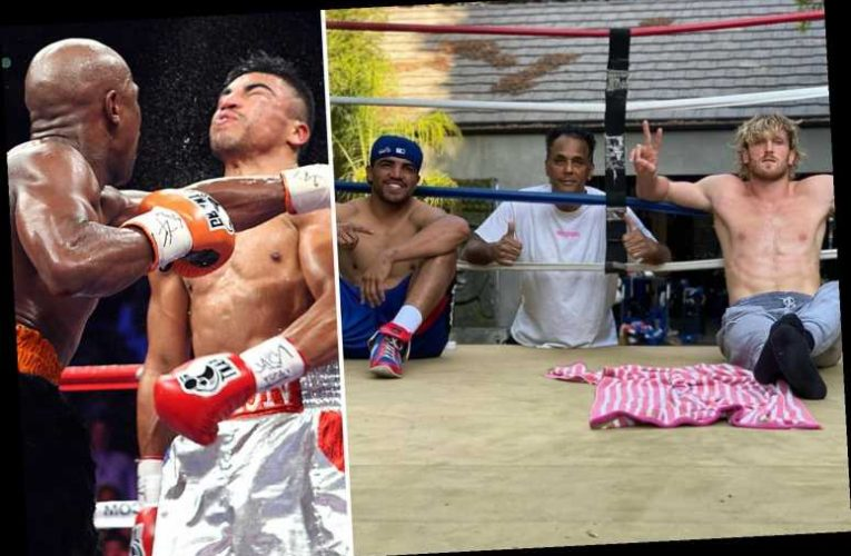 Logan Paul left ex-Floyd Mayweather opponent Victor Ortiz in 'shock and awe' after YouTuber 'KO'd a sparring partner'