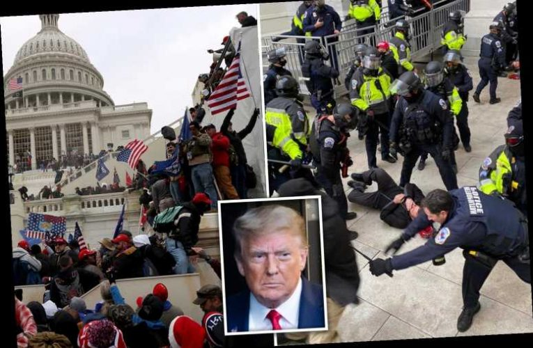 Why has Donald Trump declared a state of emergency?