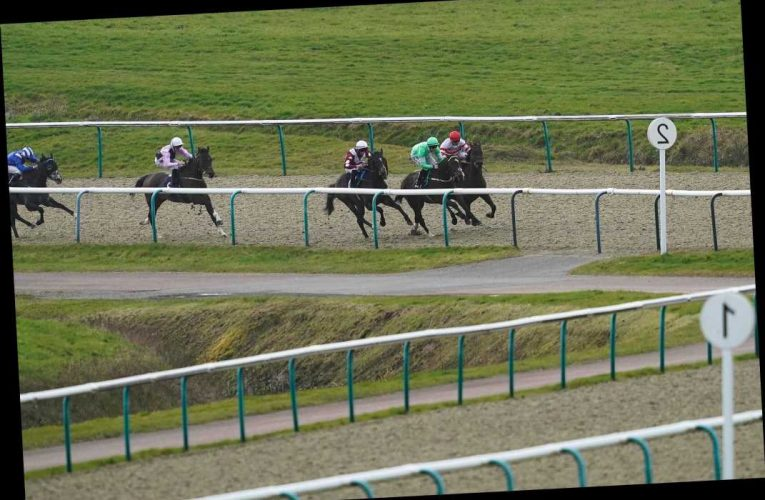 Horse racing offers and free bets for today's races at Lingfield and Wolverhampton
