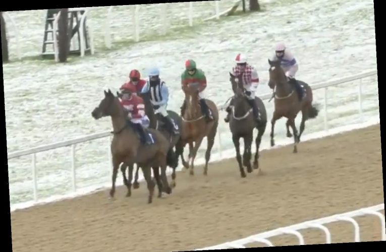 Punters in stitches at 'laughable' start to Newcastle race with all of the horses reluctant to run