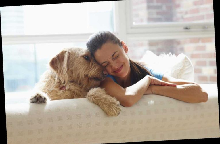 Turns out women are a dog's best friend