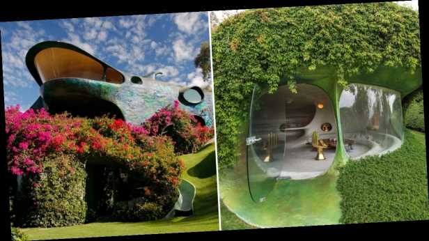 This Organic House in Mexico Puts Nature Top of Mind, and the Finished Product Is Interstellar
