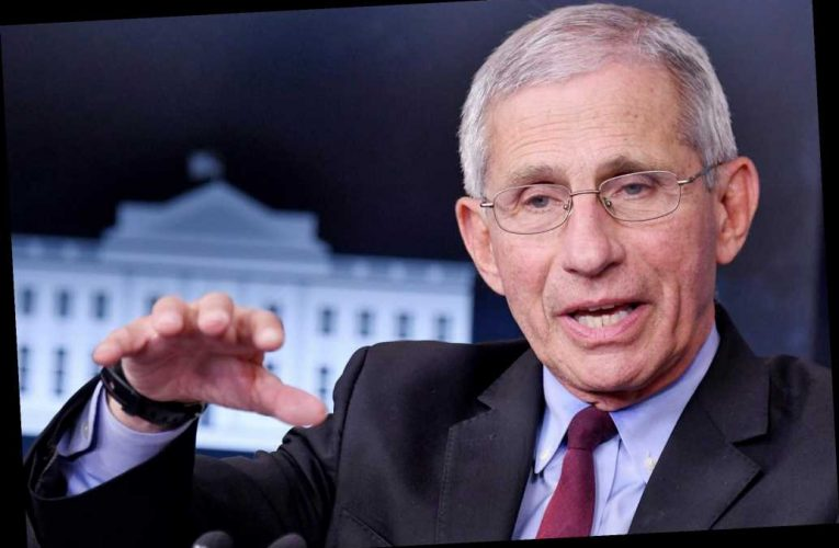 Fauci warns of 'more ominous' strains of COVID-19 from Brazil, South Africa