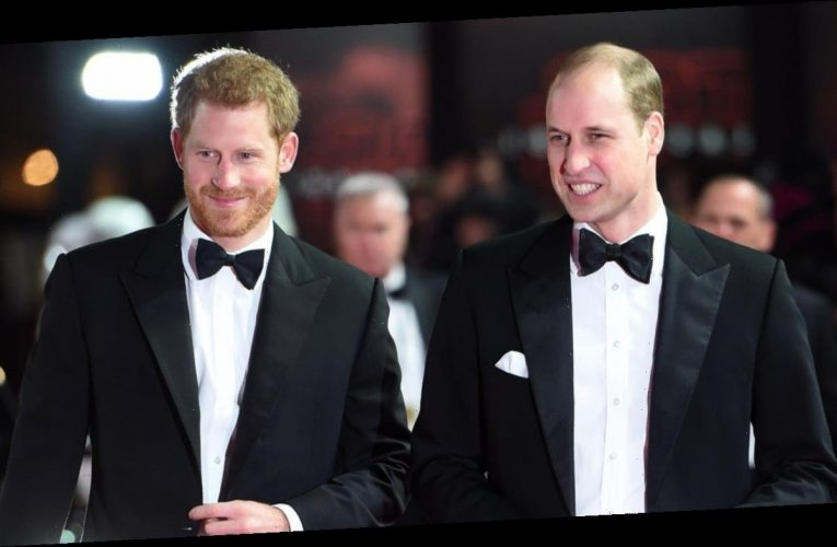 How Prince Harry and Prince William Reconnected Over the Holidays