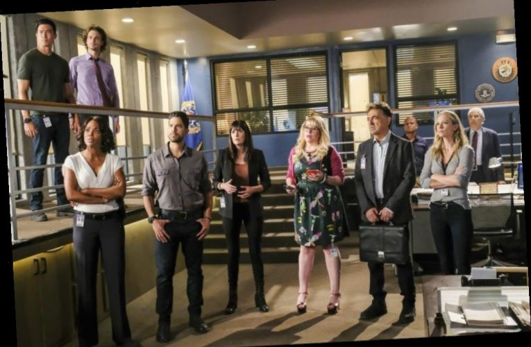 'The Real Criminal Minds' Docu Series In Works At Paramount+