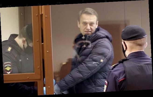 Alexei Navalny in court accused of defaming Second World War veteran