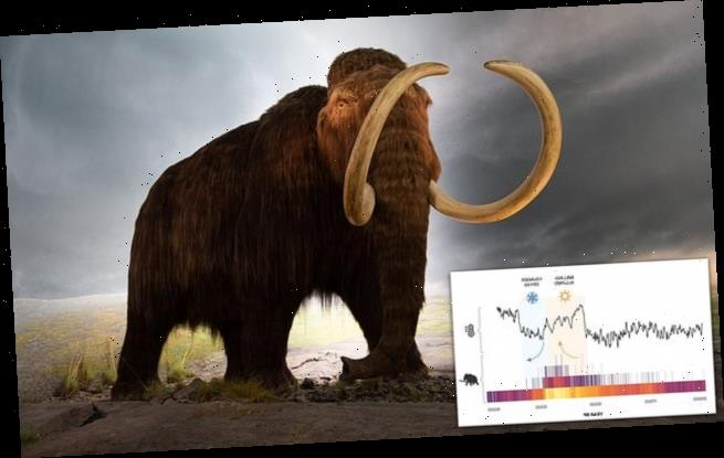 Cold snap killed off North America's woolly mammoths and  megafauna
